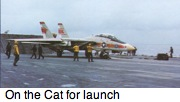 F-14 on the cat