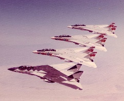 VF-1 F-14s in formation